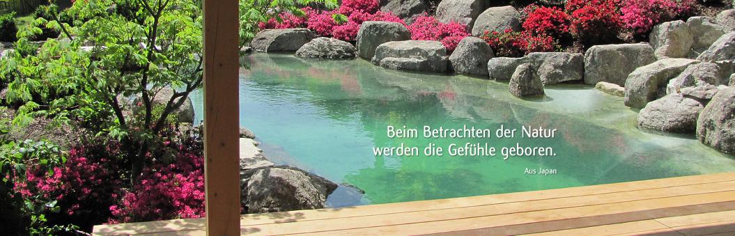 Koiteich, Koiteichbau, Garten und Landschaftsbau Bayreuth, Japangarten