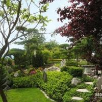 Themengarten im japanischen Stil