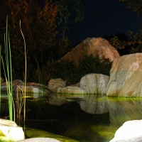 koiteich-mit-marmorfelsen-nachts