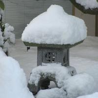 Japanischer Garten mit Gartenlaterne im Winter