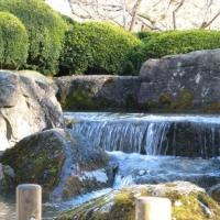 Japanischer Garten Augsburg 2