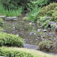 Japangarten Murin an Kyoto 1