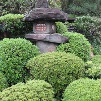 Japangarten Murin an Kyoto 3