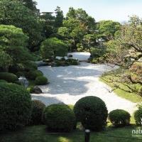 Japangarten Chion 3