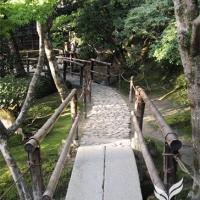 Japangarten Ginkaku 2