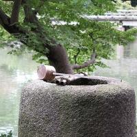 Shusuitei Tea Garden 1