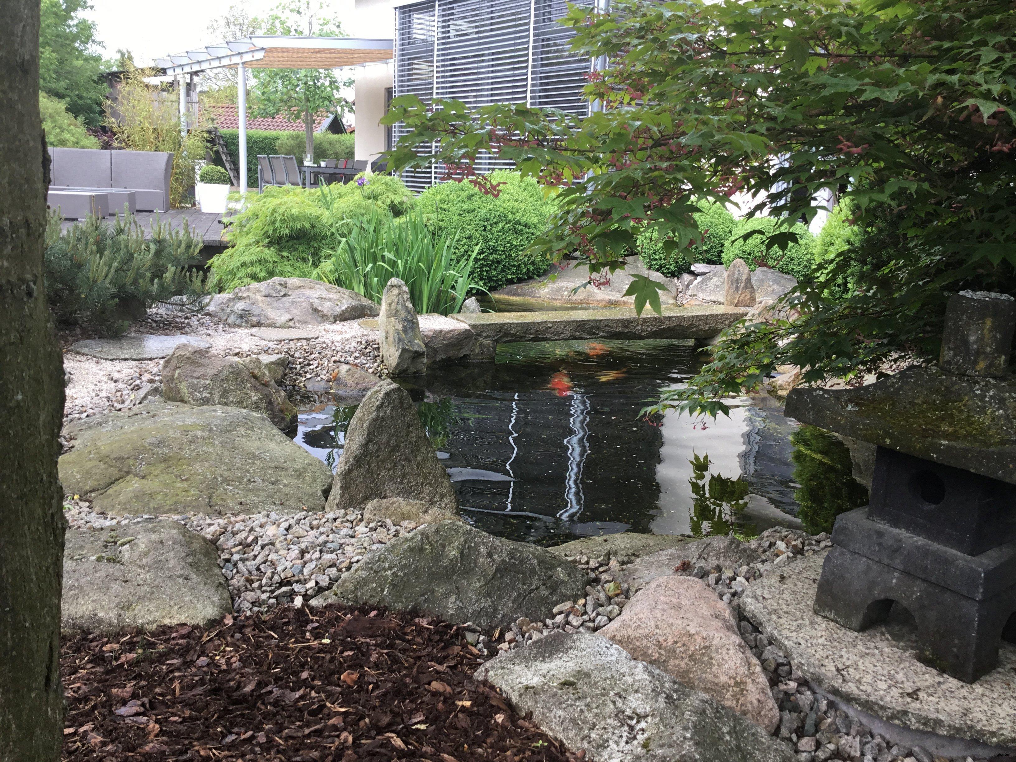 teichg rten koiteiche naturform garten und landschaftsbau japanischer garten und. Black Bedroom Furniture Sets. Home Design Ideas