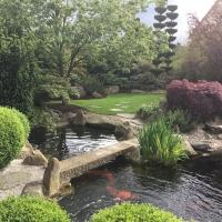Garten und Landschaftsbau Bayreuth 5.JPG