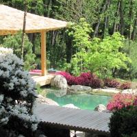 Japangarten incl. Japanischer Gartenpavillon und Koiteich