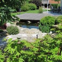 Japangarten mit Koiteich