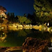 Gartenteich bei Nacht Oberfranken