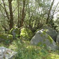 Granitfindlinge für japanische Gärten