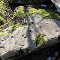 Marmorfelsen mit Patina Schieferfelsen für Japanische Gärten
