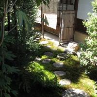Zengarten Zuiho in Temple 1
