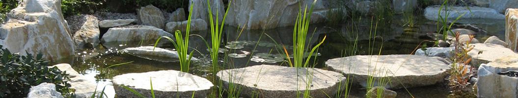 Japanischer Garten mit Trittsteinen durch einen Koiteich